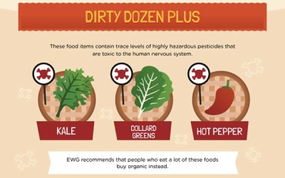 Comer Organico es Necessario?