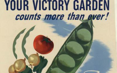 Guerra y Dieta