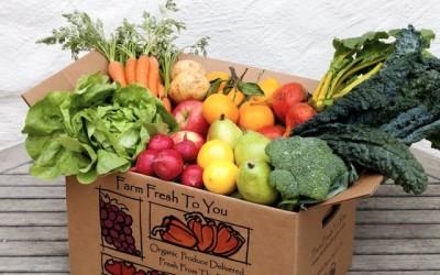 Cómo Conseguir Frutas y Verduras Orgánicas GRATIS